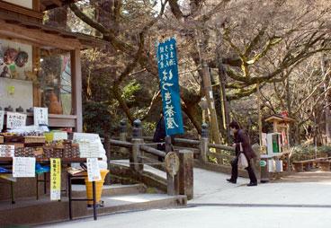 Hime_72402yogo.jpg